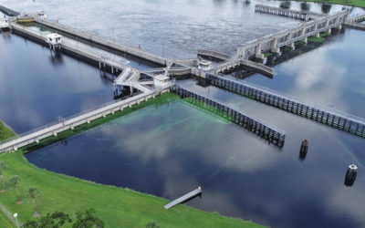 Expert Comments to the ACOE for Lake Okeechobee's Regulation Schedule