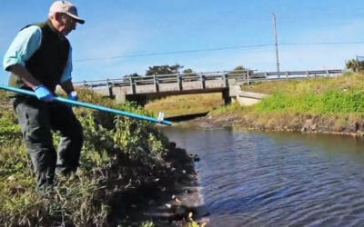 Calusa Waterkeeper to Conduct Source Tracing of Fecal Bacteria in Billy's Creek