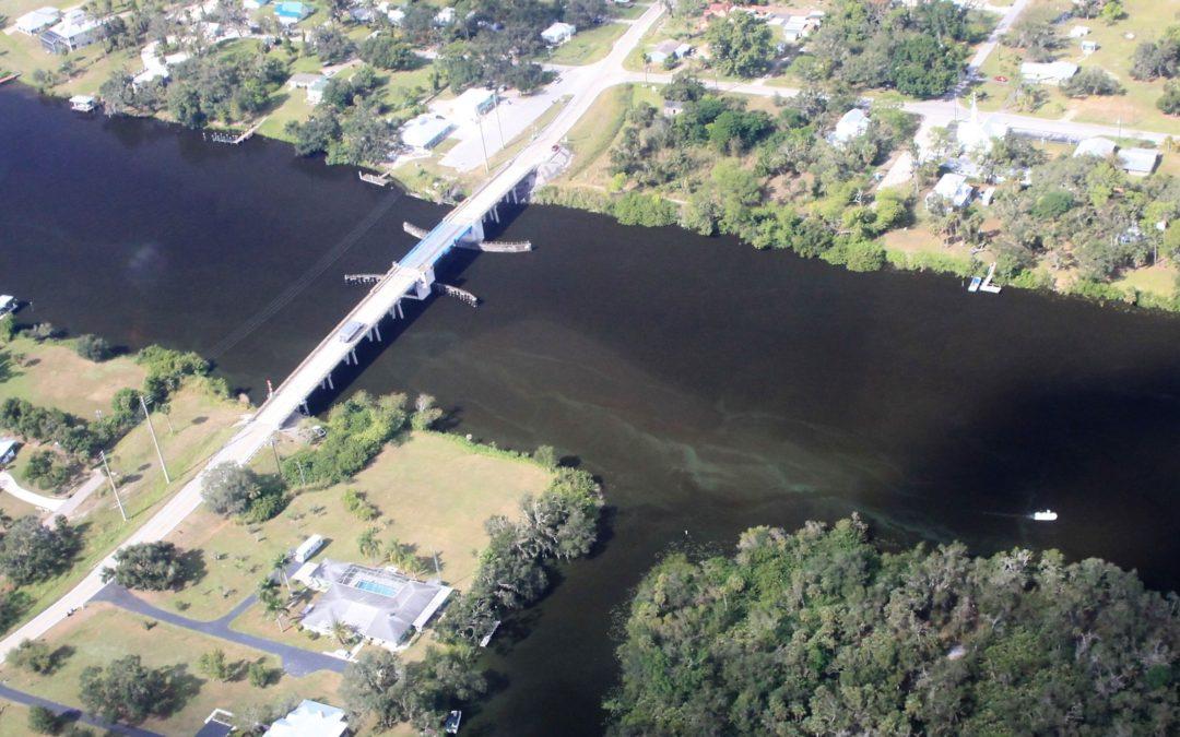 algae in Caloosahatchee