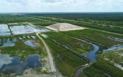 SWFL to Feds: Don't Make us Bear the Brunt of Dirty Lake O Releases
