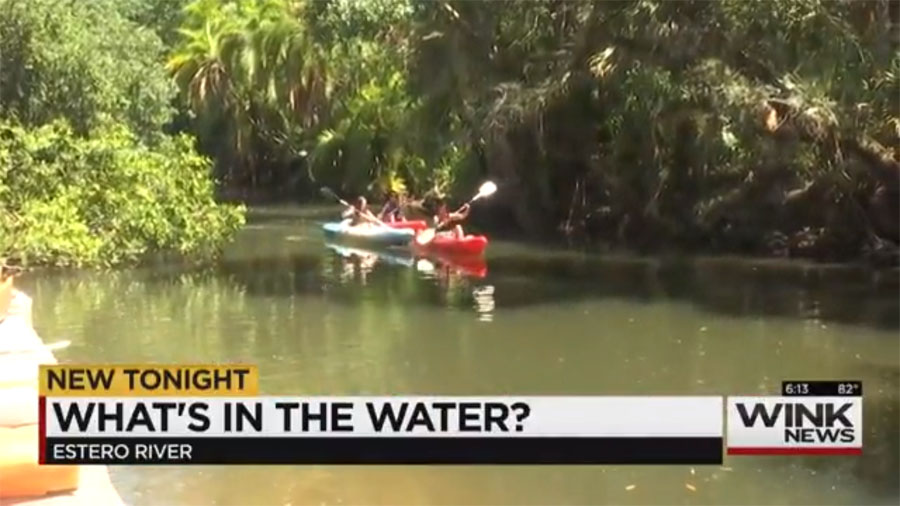 Estero River Teeming with Bacteria but Lack Warnings for Danger