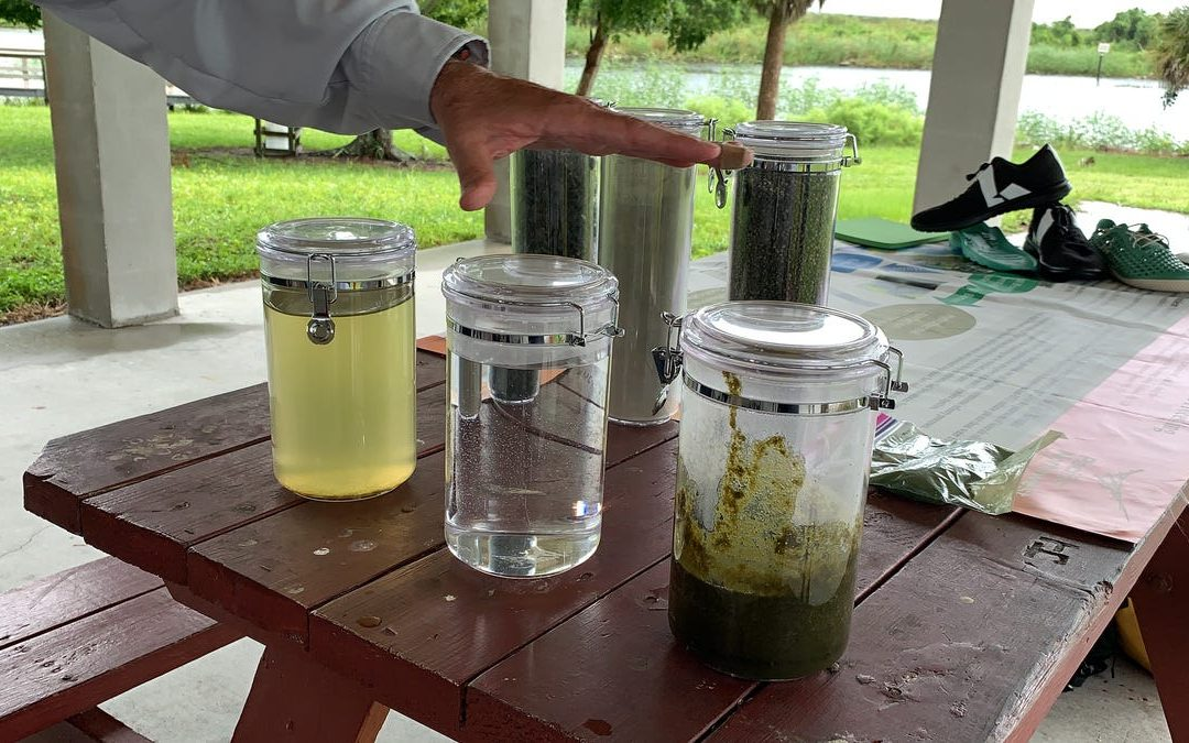 Algae Bloom Testing_NEWS-PRESS