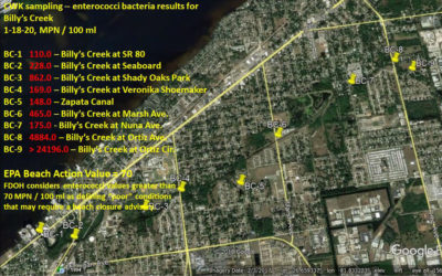 Billy's Creek Enterococci Sampling Results, January 2020