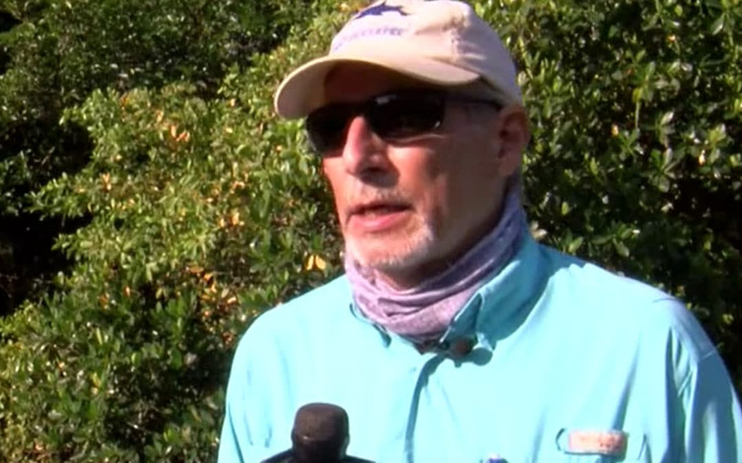 'Staggering' Amount of Fecal Bacteria Found in Billy's Creek in Fort Myers