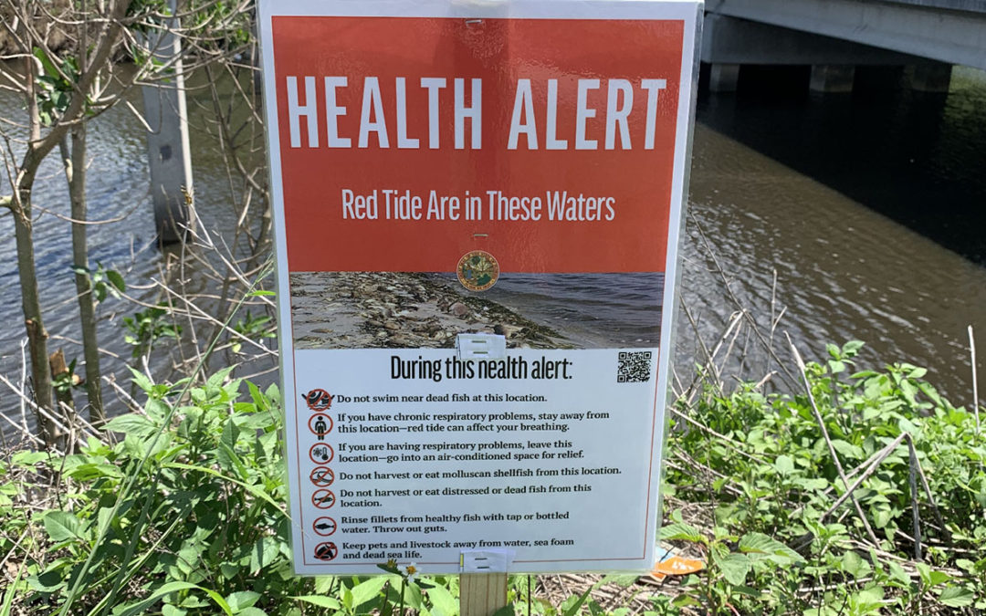 Environmental Groups want State to do More to Warn Public about Toxic Blue-Green Algae