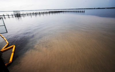 Fort Myers has a Water Pollution Problem and FDEP Promises Penalties