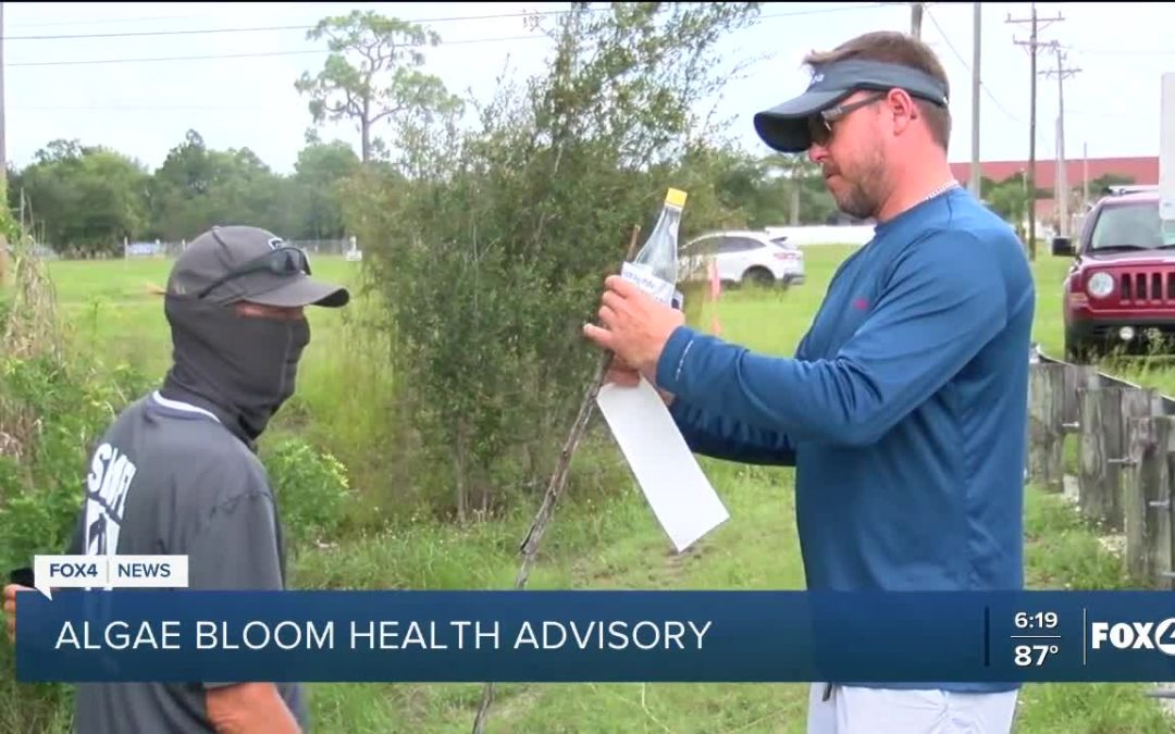HAB in Cape Coral Canals_FOX4