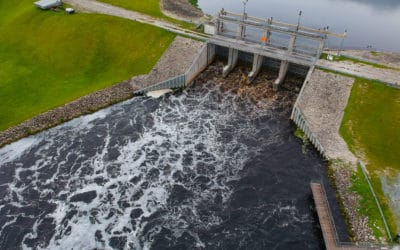 A Win Against the Army Corps' Toxic Lake Okeechobee Discharges