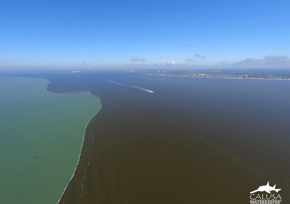 Caloosahatchee dirty water line
