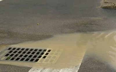 Construction Site Runoff Causing Murky Water in Downtown Fort Myers