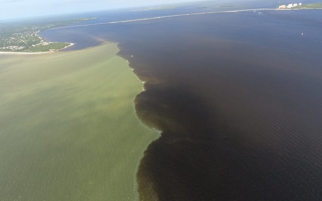 Dramatic Images Show Lake Okeechobee Releases Meeting Gulf near Sanibel
