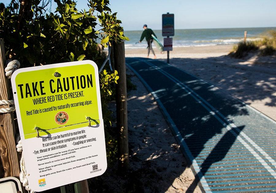 Researchers Warn Red Tide is Back in Southwest Florida