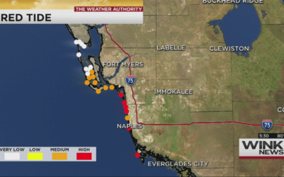 Studying How Highest Levels of Red Tide Affect People Along SWFL Coast
