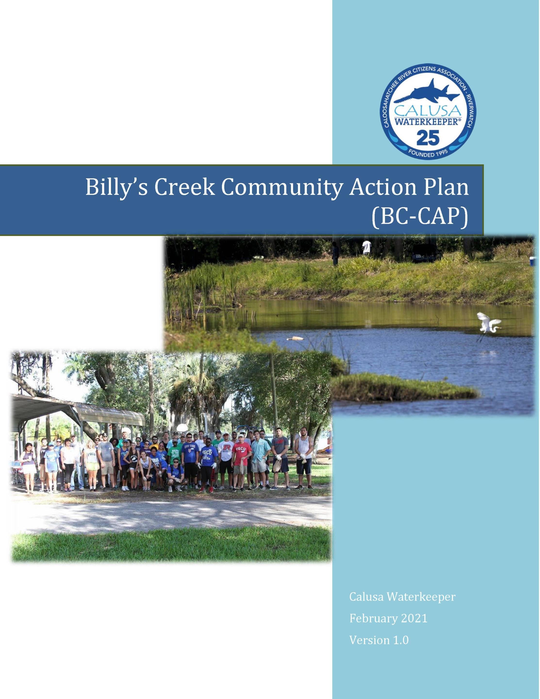 Billy's Creek Community Action Plan