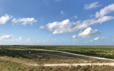 Caloosahatchee and EAA Reservoirs at the Top of Water District Work Last Year