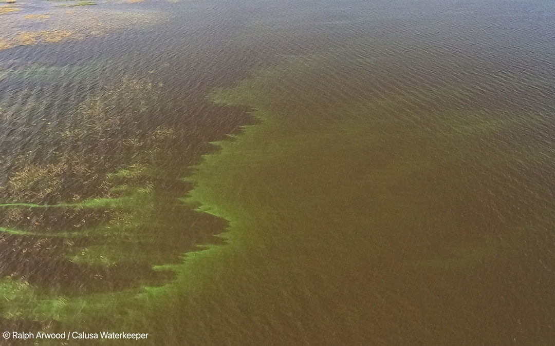 Implementation of Governor DeSantis' Blue-Green Algae Task Force Recommendations Act – SB 1522 / HB 1225