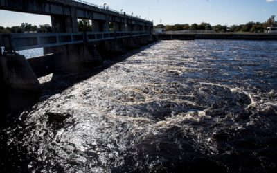 Blue-Green Algae Causes Health Officials to Close Recreational Area in Caloosahatchee