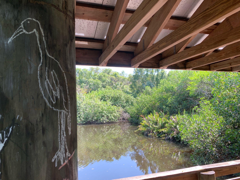 Billy's Creek