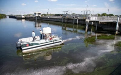 $750,000 and 6 Tons of Algaecide Later & Toxin Warning Signs are Still up Along the Caloosahatchee in Olga