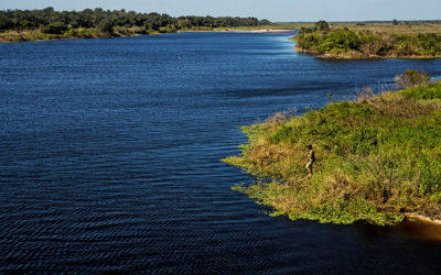 Kissimmee Restoration will Help Curb Harmful Flows & Pollution to Caloosahatchee