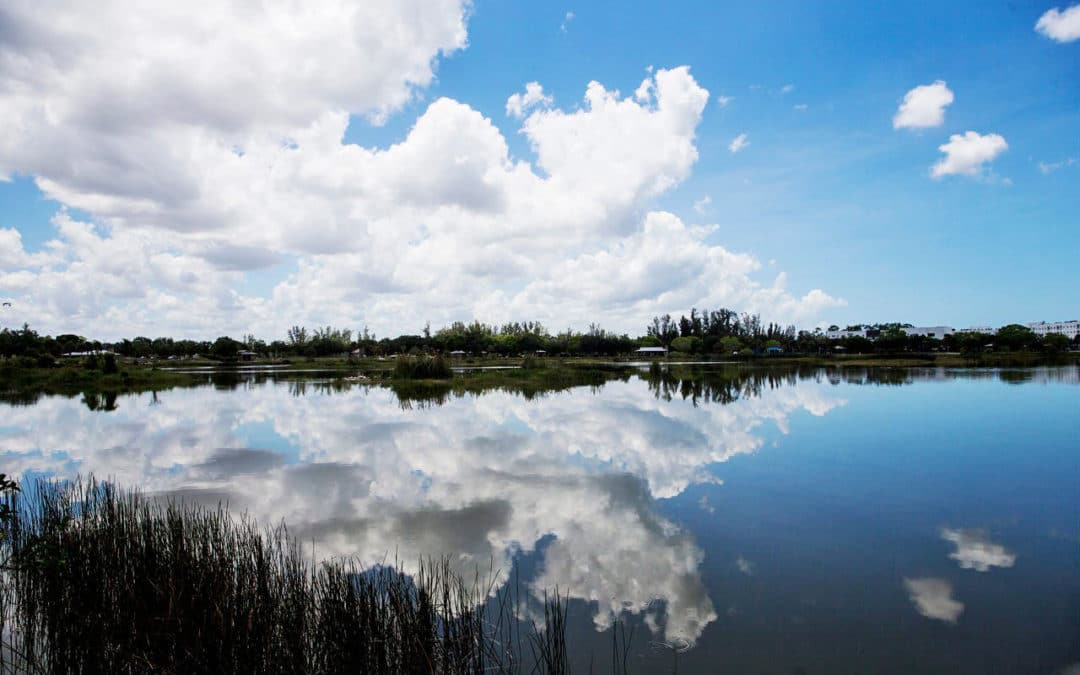 Connecting the Dots for Restoring Florida's Waters